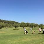 Golf 2014 0664