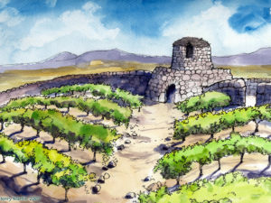 Isaiah-parable-vineyard